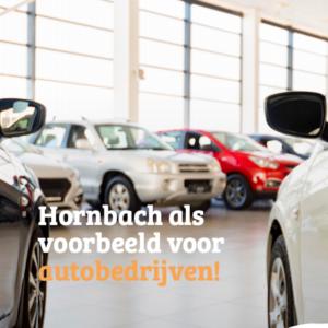 E-book- Hornbach als voorbeeld voor autobedrijven! 1
